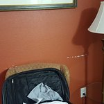 Quality Inn & Suites SeaWorld North Foto