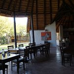 Mopane Bush Lodge Foto