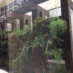Photo of Intercity Interative Jardins