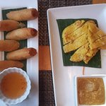 Kalua Pork Springrolls and Coconut Chicken Satay pupus (appetizers)
