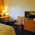 Room 215 - TV and refrigerator, no microwave.