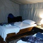 Sekenani Camp-billede