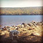 Luna at Mauch Chunk Lake Park. Mid-October 2016.