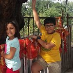 Mata Mansa Devi Mandir Photo