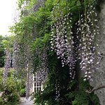 Shelburne Lodge Foto