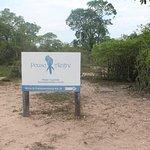 Fazenda Pouso Alegre Photo