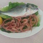 Fresh Fish with Fresh Shrimps