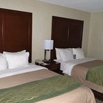 Comfort Inn-Pocono Mountain Foto