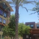 Homewood Suites by Hilton Phoenix Chandler Fashion Center Foto