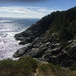View from the headlands of Monhegan