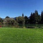 Foto de Quinault River Inn