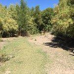 Fort McDowell Adventures Foto