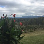 Silver Fork Winery