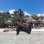 vista del Hotel Maya Luna desde la playa