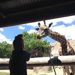 Roger Williams Park Zoo Foto