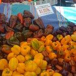 wonderful variety of peppers