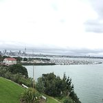 View from the restuarant over the Marina, Auckland Central area and Skytower