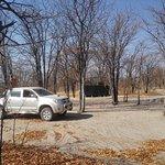 Mankwe Bush Lodge Foto