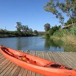 Avoca River Cabins Foto
