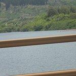 Kayaking on the Waimea River