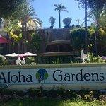 Aloha Gardens Foto