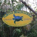 Photo of Turtle Beach Lodge