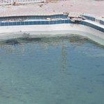 Daytona Inn Beach Resort Foto