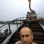 P_20161002_150201_BF_large.jpg