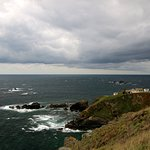 Lizard Point .... the cafe is there, promise!
