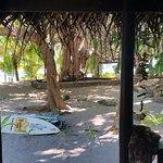 写真Ha'atafu Beach Resort枚