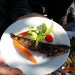 la sardine supplémentaire que nous avons rapporté à la maison !