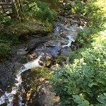 Water falling downhill