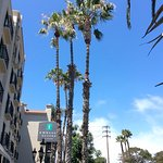 Embassy Suites by Hilton Hotel Los Angeles International Airport South Bild