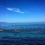 Kayak tour from Costa Sur Resort in Puerto Vallarta