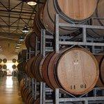 Morgenster Wine Farm Foto