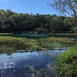 Rainbow Springs State Park Foto