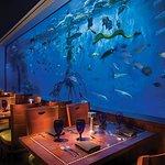 Dine in the shadows of a 33,500 gallon aquarium tank!