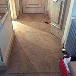 Minging Carpet and trip hazard