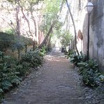 Narrow and lined with greenery