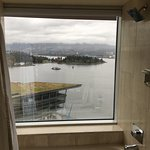 Bathtub/shower with a view!
