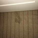 The place is filthy.  This is the carpet in the room they put me in.  Stains, mold...disgusting