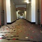 Hilton Garden Inn Rapid City Foto