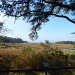View of marsh bay