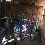 Free bikes to use
