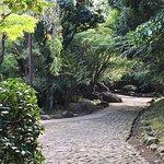 公園内、日本庭園