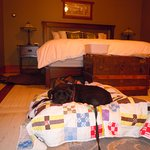 Bert's luxury bed (quilt is from home)