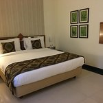 Clean Spacious & Well Furnished Rooms