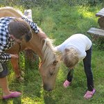 Think some pony is used to kids.
