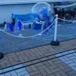 Foto di Osaka Aquarium Kaiyukan