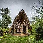 The Bamboo Hall